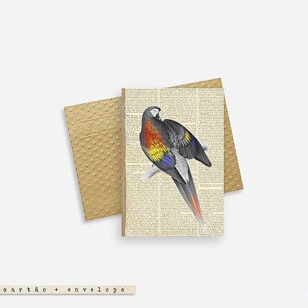 Cartão Envelope - Arara