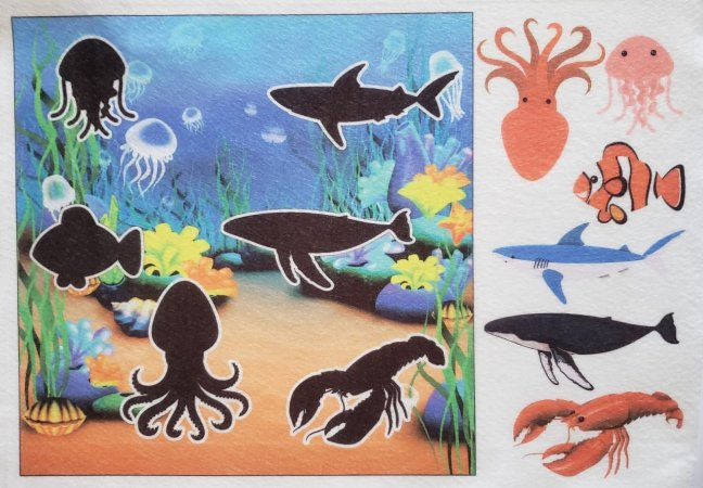 Livro - Sombras - Fundo do mar