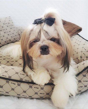 Enxoval para cachorro Mr. Puppy