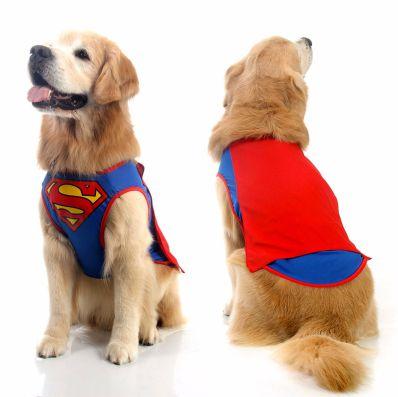 Colete para cachorro do Superman