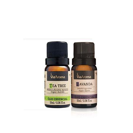 Lavanda e Melaleuca - Primeiros  óleos essenciais