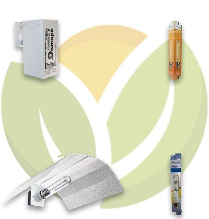 Kit Iluminação Basic Vega e Flora 250W
