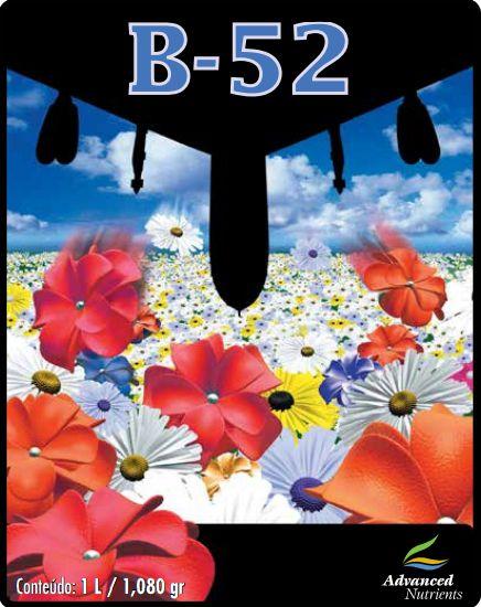 B 52 Advanced Nutrientes