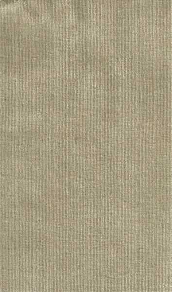 1501 cor 008 Velvet Stone Bege