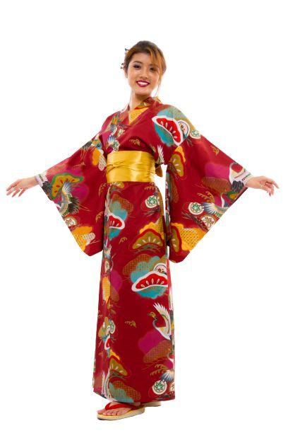 Kimono Japão Adulto