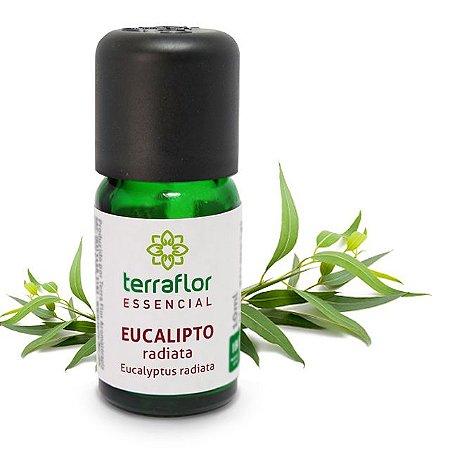 Óleo Essencial de Eucalipto Radiata 10ml – Terra Flor