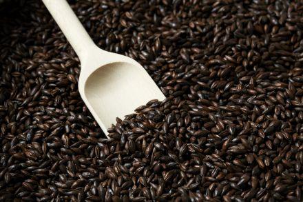 Malte Especial Chocolate B Importado BlackSwaen