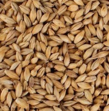 Malte Base Pale Ale Nacional Agrária
