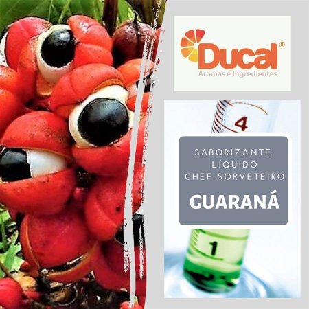 SABORIZANTE LIQ CHEF SORVETEIRO DUCAL AROMA GUARANÁ