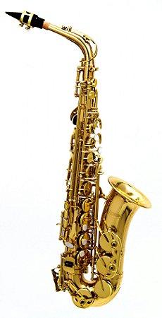 Saxofone Alto Hoyden EB Laqueado HAS-25L