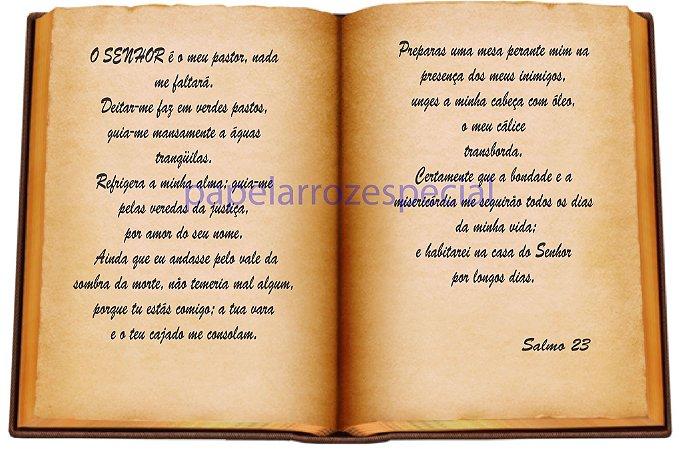BIBLIA SAGRADA 016 A4