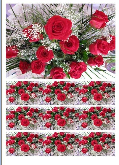 Flores 002 Papel Faixa Lateral