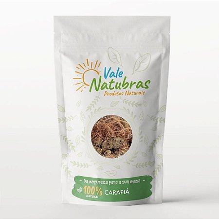 Chá de Carapiá - Dorstenia multiformis - Miq. 30g - Vale Natubras