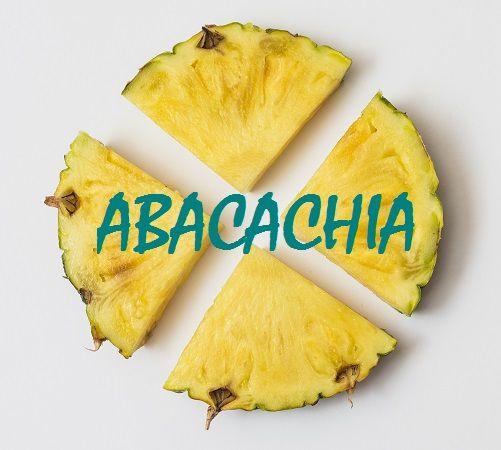 Abacachia - Suco Detox  GO4FIT Alimentação Saudável