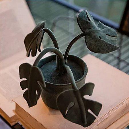 Vaso Costela de Adão Verde Mini