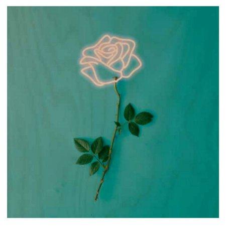 Quadro Flor Neon