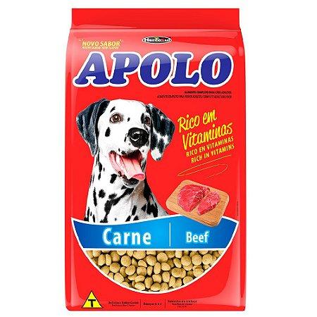 Ração Para Cães Adultos Apolo Carne 10,1kg - Hercosul