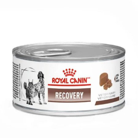 Ração Úmida Royal Canin Veterinary Recovery Wet 195g