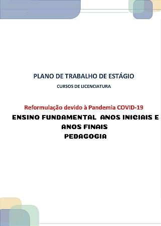 Plano de trabalho dos estágios dos cursos de licenciatura reformulação devido à pandemia covid-19 estágio II ensino fundamental (Pedagogia)