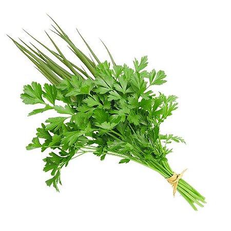 Cheiro Verde Maço