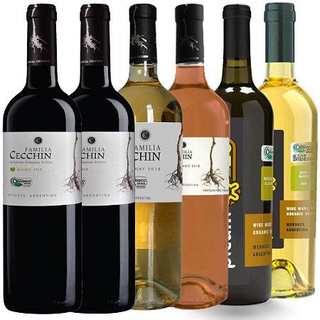 Kit Cecchin Wine Friday