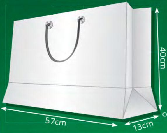 Sacola de Papel CG - (LxAxP) 57 x 40 x 13 cm