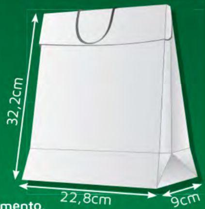 Sacola de Papel DG - (LxAxP) 22,8 x 32,2 x 9 cm com aba de fechamento