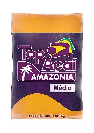 POLPA DE AÇAÍ MÉDIO (1,02Kg)