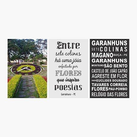 KIT COM 3 PLACAS DECORATIVAS GARANHUNS, ENTRE SETE COLINAS E RELÓGIO DAS FLORES