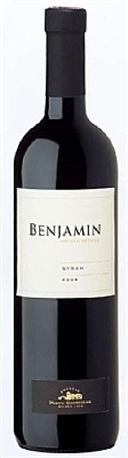 Benjamin Nieto Syrah - 750ml