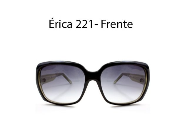 Óculos de Sol Detroit Érica 221