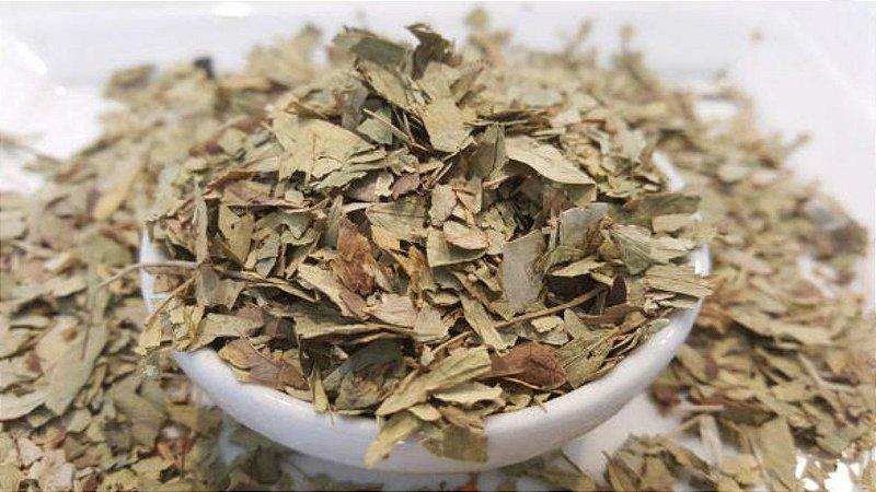 Chá de senne folhas 100g
