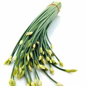 Sementes de Cebolinha Chinesa (Nirá): 20 Sementes