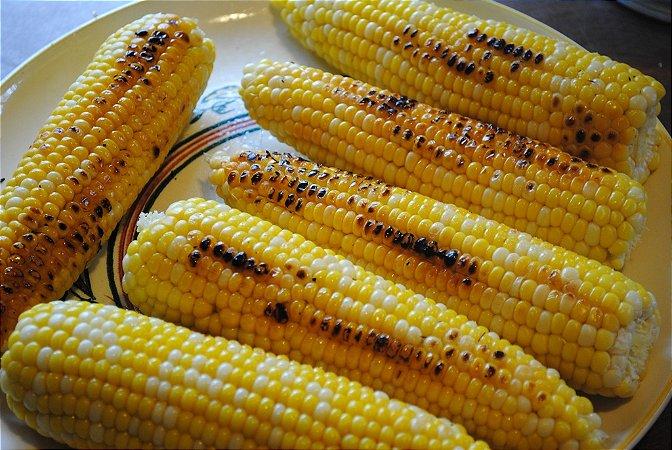 Sementes de Milho Itapoã: 10 Sementes