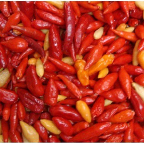 Sementes de Pimenta Chili Mexicana: 20 Sementes