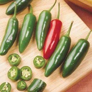 Sementes de Pimenta Serrano: 10 Sementes