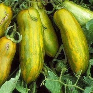 Sementes de Tomate Green Sausage: 20 Sementes