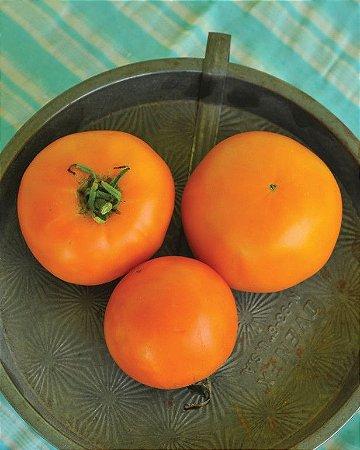 Sementes de Tomate Laranja: 20 Sementes