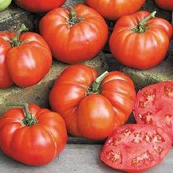 Sementes de Tomate Ponderosa Red: 20 Sementes