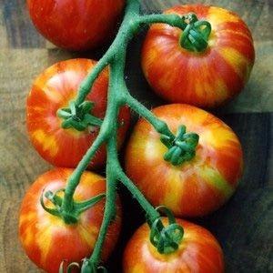 Sementes de Tomate Tigerella: 20 Sementes