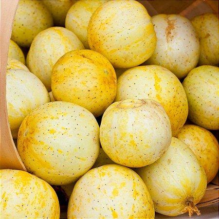 Sementes de Pepino Limão (Lemon): 15 Sementes