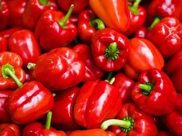 Sementes de Pimentão Vermelho: 50 Sementes