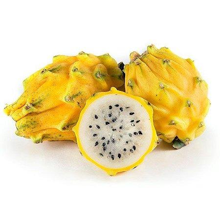 Sementes de Pitaya Amarela (Dragon Fruit): 15 Sementes
