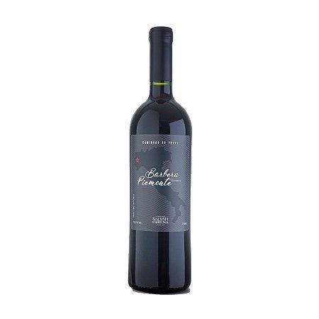 Salvati e Sirena Vinho Tinto Histórico Barbera Piemonte