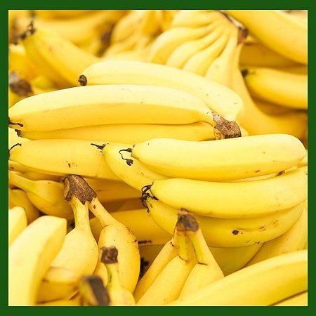 Banana Manica Kg