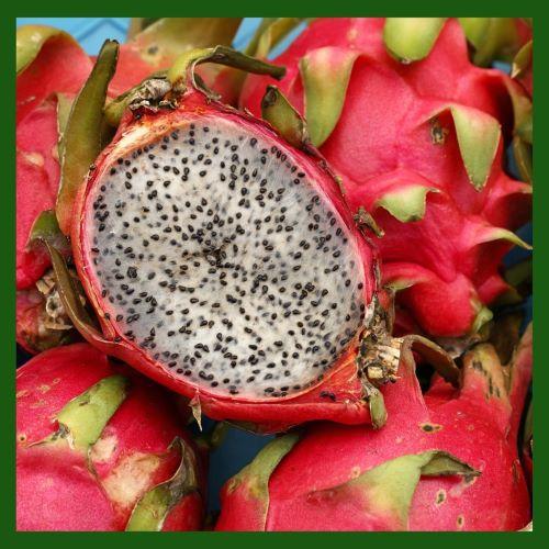 Pitaya branca e vermelha Kg