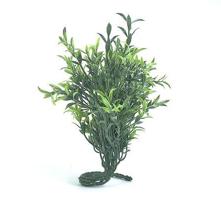 Planta M