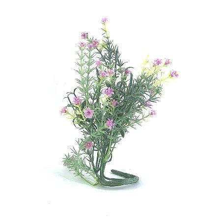 Planta Capim Florzinha Rosa