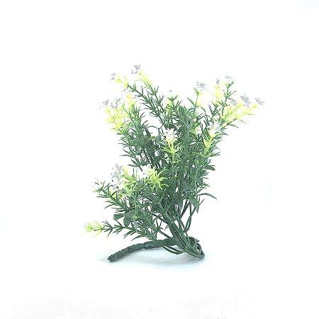 Planta Capim Florzinha Branco