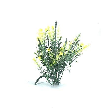 Planta Capim Florzinha Amarelo